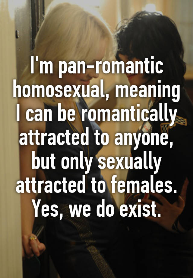 Panromantic homosexual rights