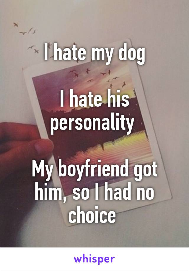 I hate my dog  I hate his personality   My boyfriend got him, so I had no choice
