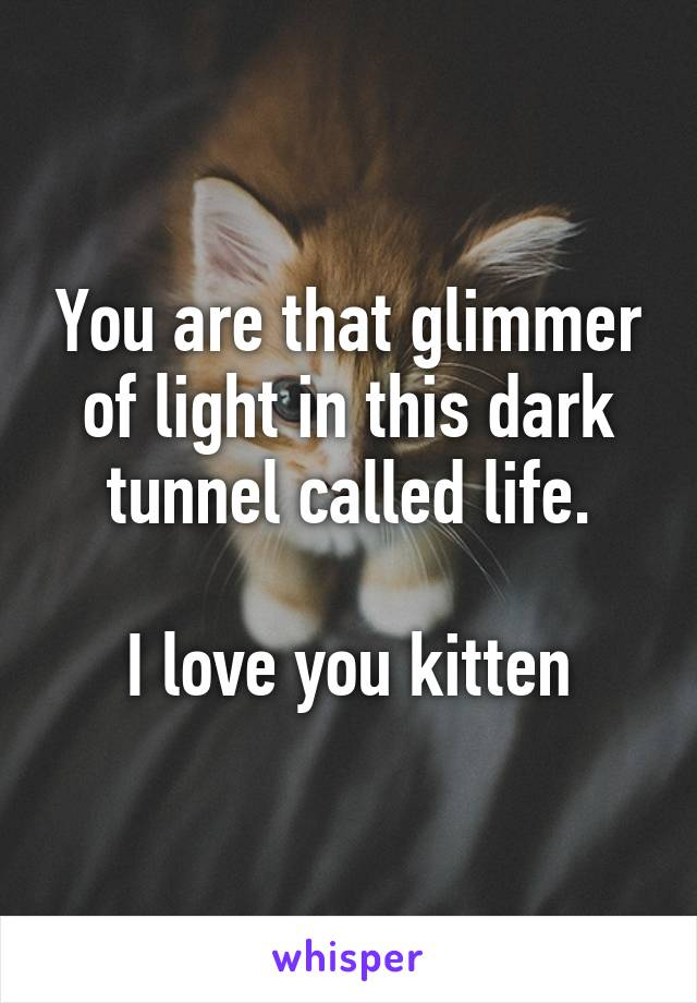 You are that glimmer of light in this dark tunnel called life.  I love you kitten