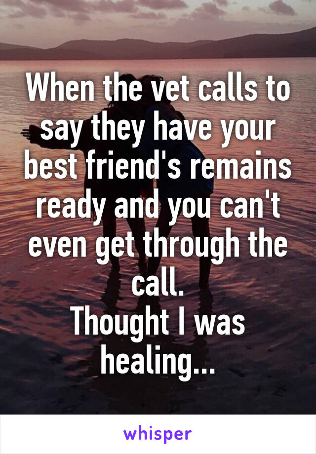 When the vet calls to say they have your best friend's remains ready and you can't even get through the call. Thought I was healing...