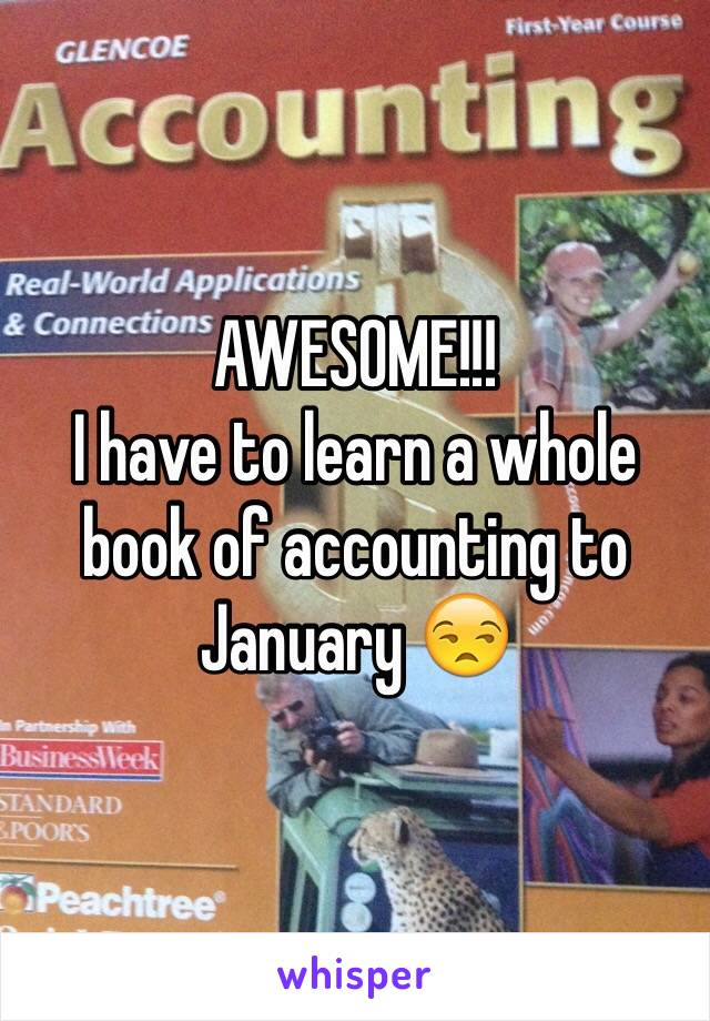 AWESOME!!! I have to learn a whole book of accounting to January 😒