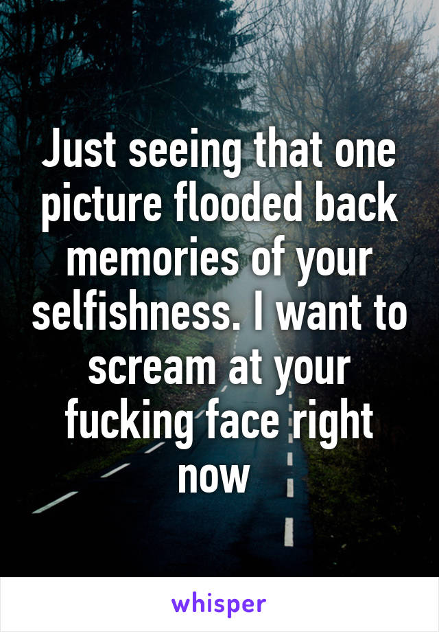 Just seeing that one picture flooded back memories of your selfishness. I want to scream at your fucking face right now