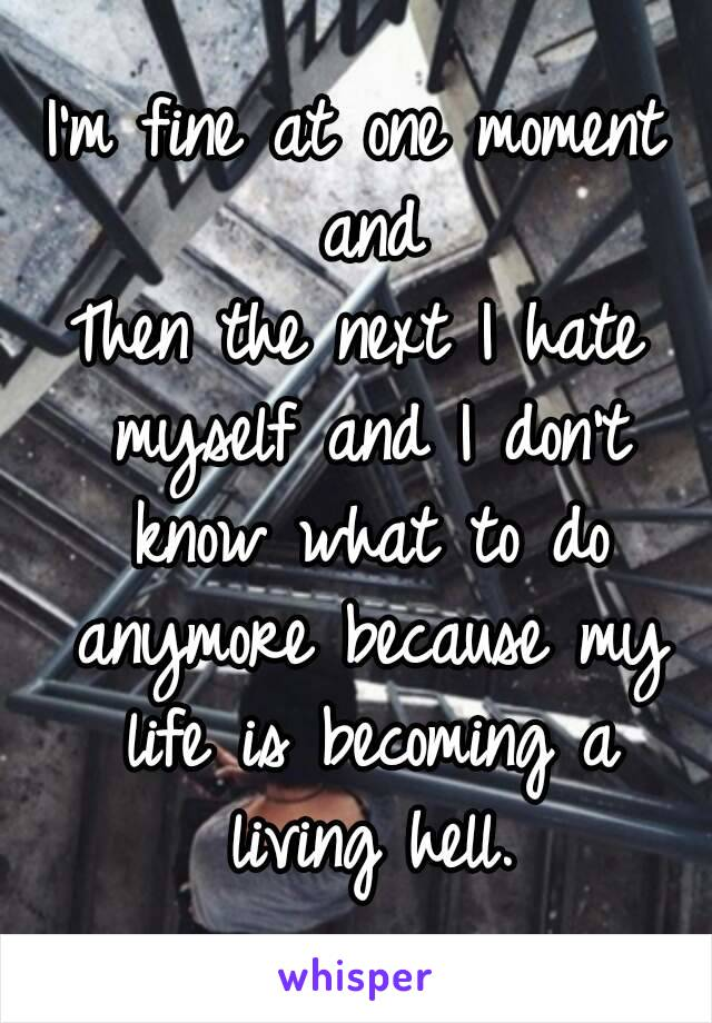 I'm fine at one moment and Then the next I hate myself and I don't know what to do anymore because my life is becoming a living hell.
