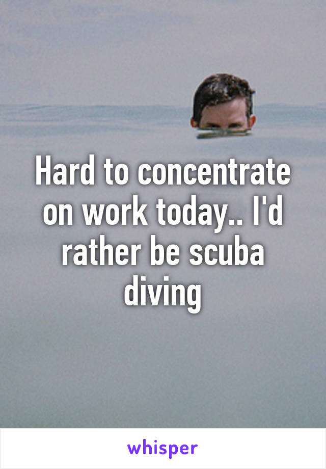 Hard to concentrate on work today.. I'd rather be scuba diving