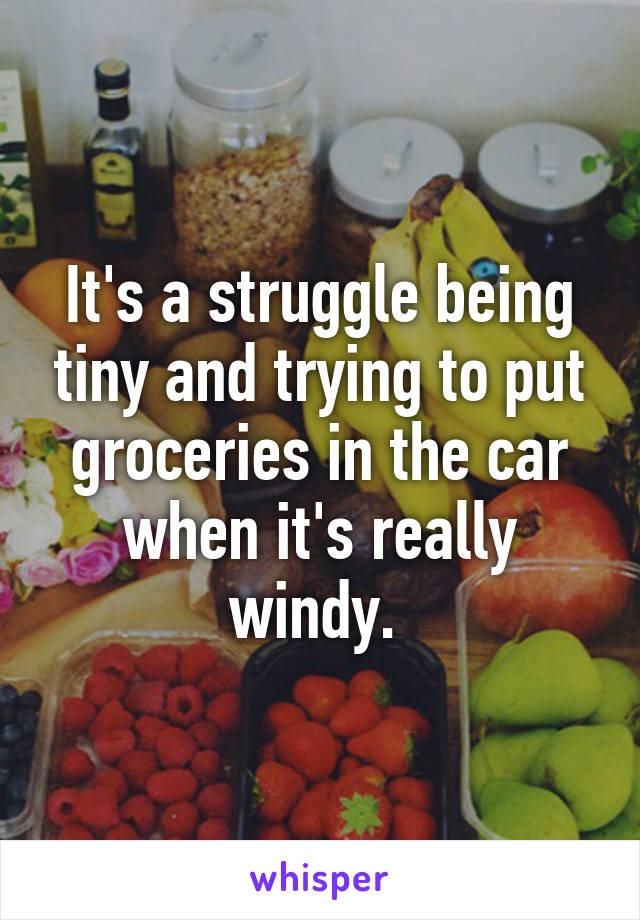 It's a struggle being tiny and trying to put groceries in the car when it's really windy.