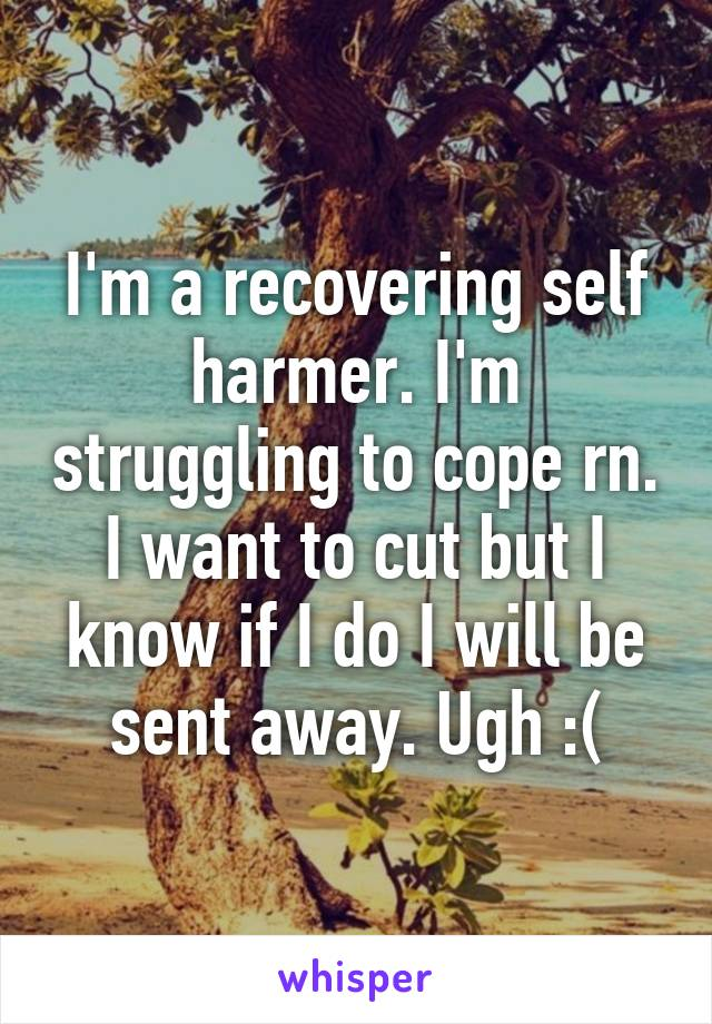 I'm a recovering self harmer. I'm struggling to cope rn. I want to cut but I know if I do I will be sent away. Ugh :(
