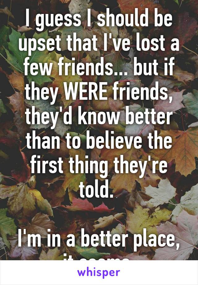 I guess I should be upset that I've lost a few friends... but if they WERE friends, they'd know better than to believe the first thing they're told.   I'm in a better place, it seems.