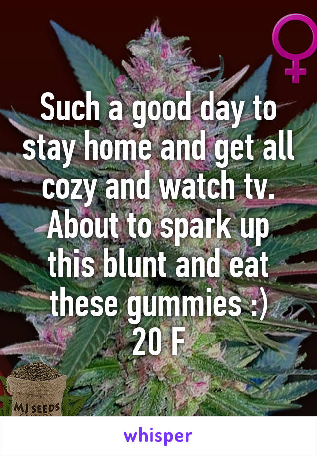 Such a good day to stay home and get all cozy and watch tv. About to spark up this blunt and eat these gummies :) 20 F