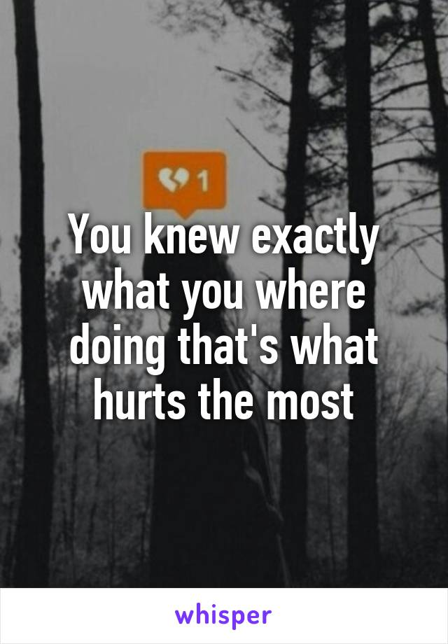 You knew exactly what you where doing that's what hurts the most