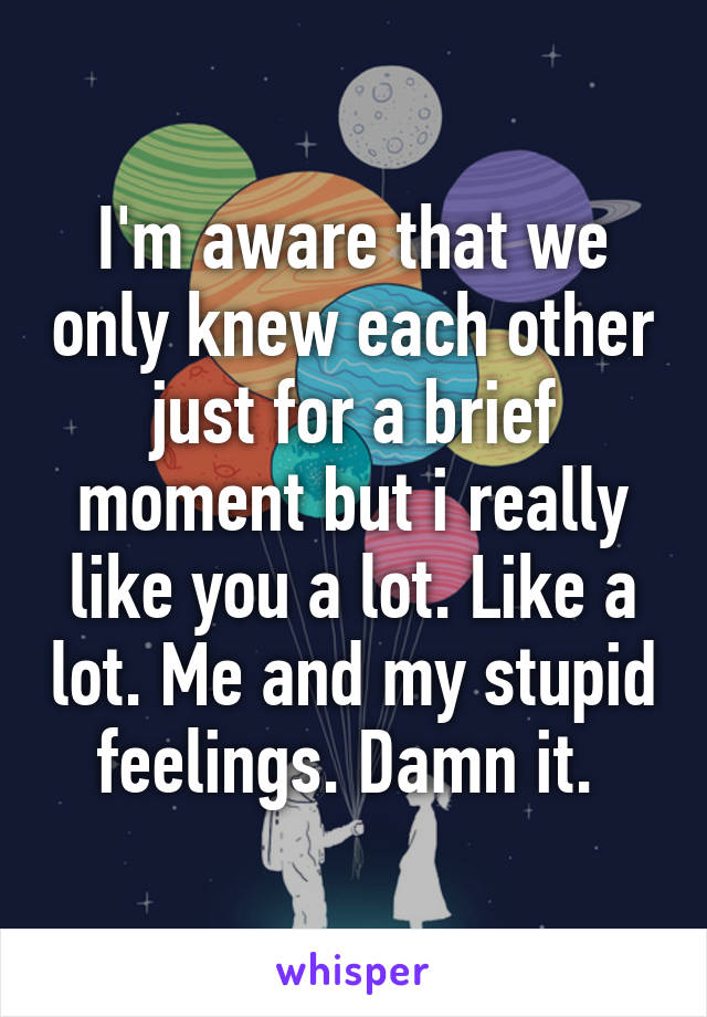 I'm aware that we only knew each other just for a brief moment but i really like you a lot. Like a lot. Me and my stupid feelings. Damn it.