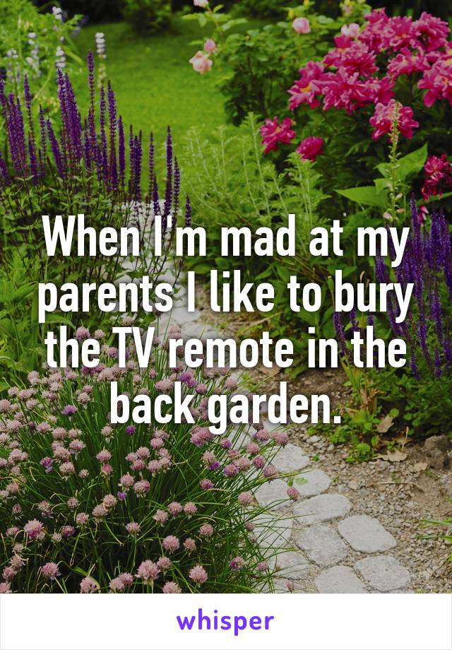 When I'm mad at my parents I like to bury the TV remote in the back garden.