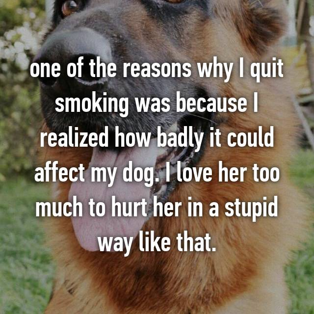 one of the reasons why I quit smoking was because I realized how badly it could affect my dog. I love her too much to hurt her in a stupid way like that.