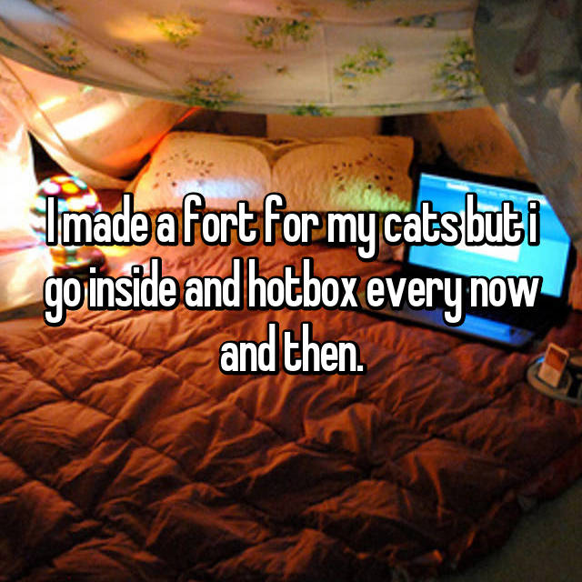 I made a fort for my cats but i go inside and hotbox every now and then.