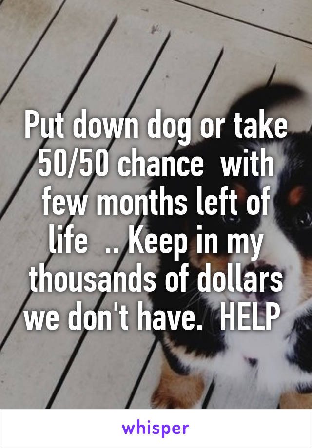 Put down dog or take 50/50 chance  with few months left of life  .. Keep in my thousands of dollars we don't have.  HELP