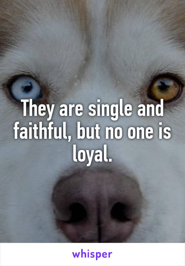 They are single and faithful, but no one is loyal.