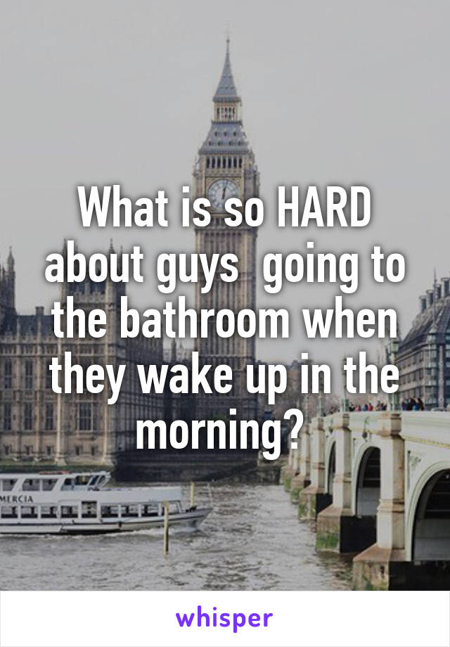 What is so HARD about guys  going to the bathroom when they wake up in the morning?