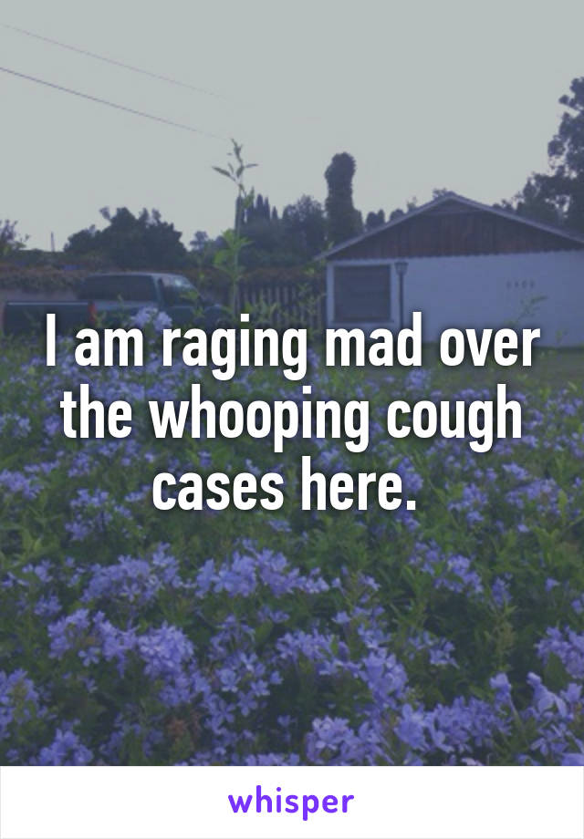 I am raging mad over the whooping cough cases here.