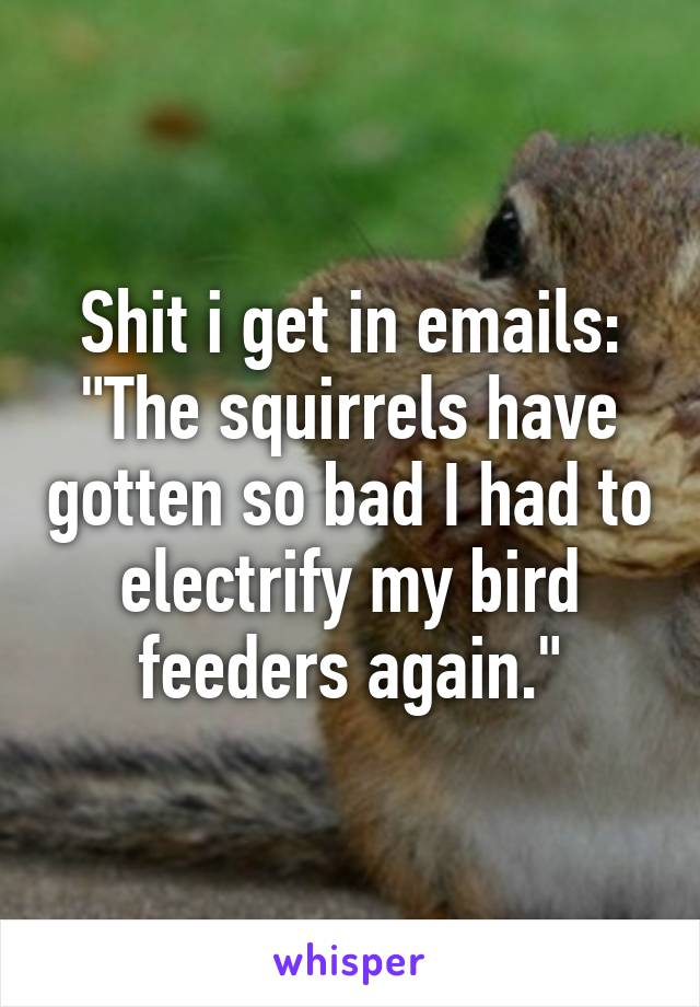 """Shit i get in emails: """"The squirrels have gotten so bad I had to electrify my bird feeders again."""""""