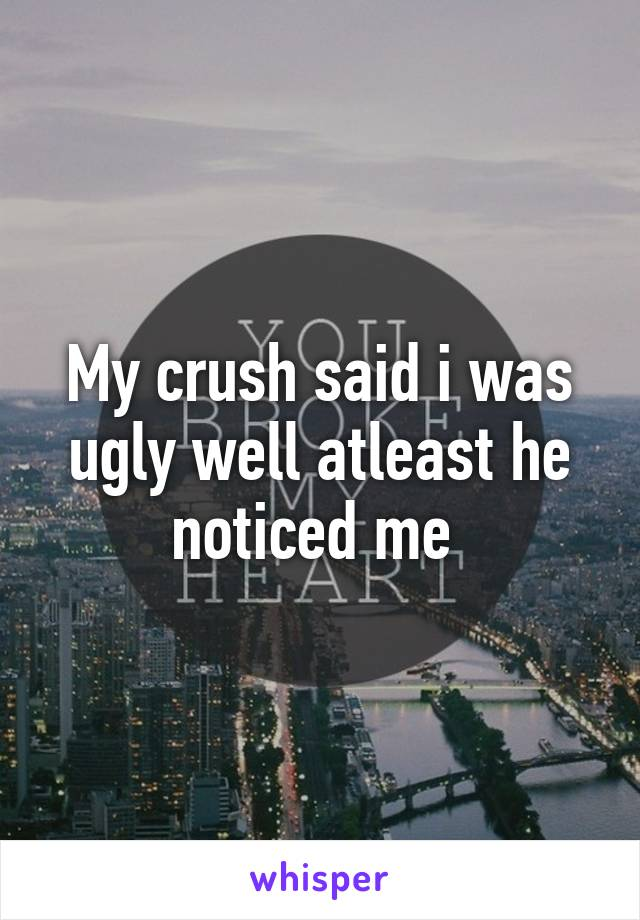My crush said i was ugly well atleast he noticed me