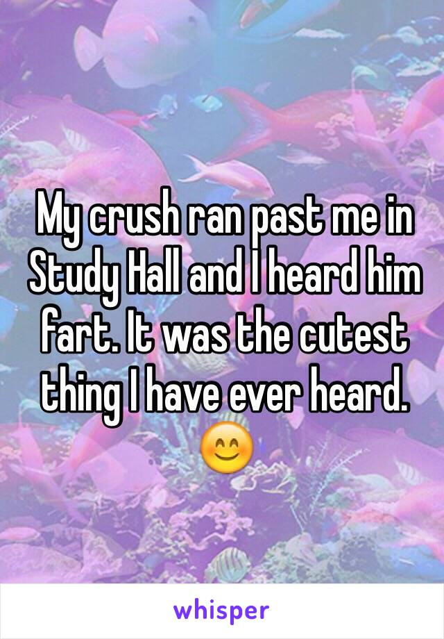 My crush ran past me in Study Hall and I heard him fart. It was the cutest thing I have ever heard. 😊