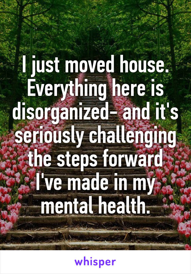 I just moved house. Everything here is disorganized- and it's seriously challenging the steps forward I've made in my mental health.
