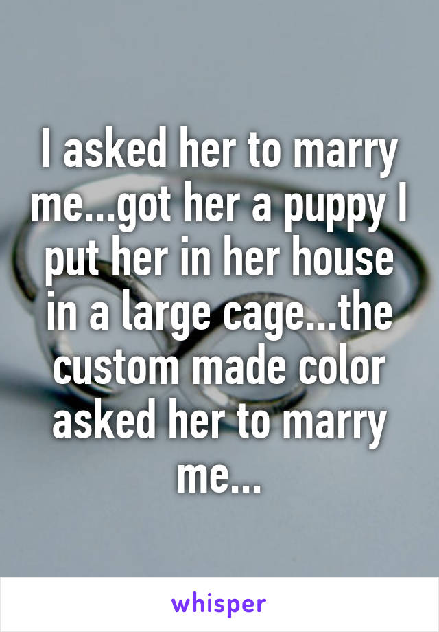 I asked her to marry me...got her a puppy I put her in her house in a large cage...the custom made color asked her to marry me...