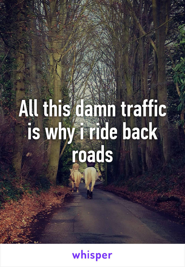 All this damn traffic is why i ride back roads