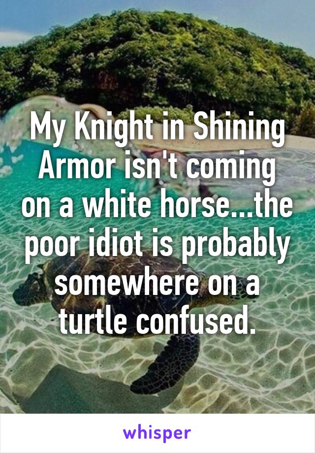 My Knight in Shining Armor isn't coming on a white horse...the poor idiot is probably somewhere on a turtle confused.