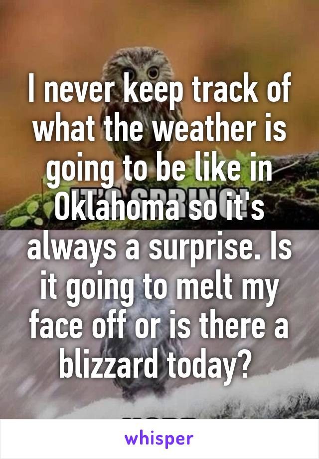 I never keep track of what the weather is going to be like in Oklahoma so it's always a surprise. Is it going to melt my face off or is there a blizzard today?