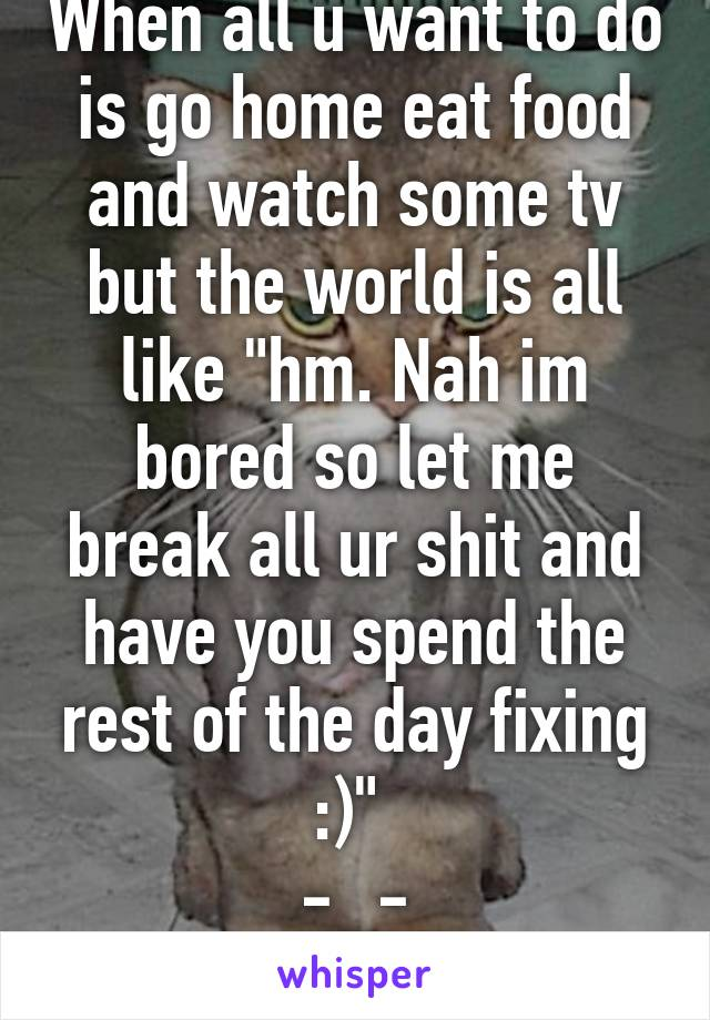 """When all u want to do is go home eat food and watch some tv but the world is all like """"hm. Nah im bored so let me break all ur shit and have you spend the rest of the day fixing :)""""  -_- fuck life"""