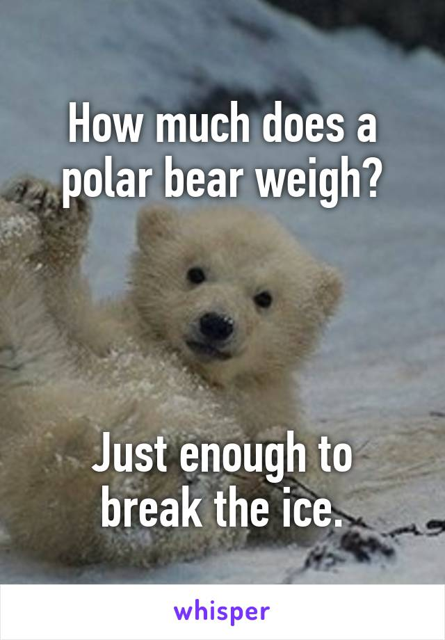 How much does a polar bear weigh?     Just enough to break the ice.