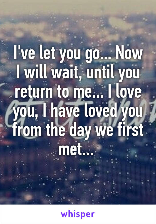 I've let you go... Now I will wait, until you return to me... I love you, I have loved you from the day we first met...