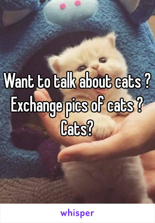 Want to talk about cats ? Exchange pics of cats ?  Cats?