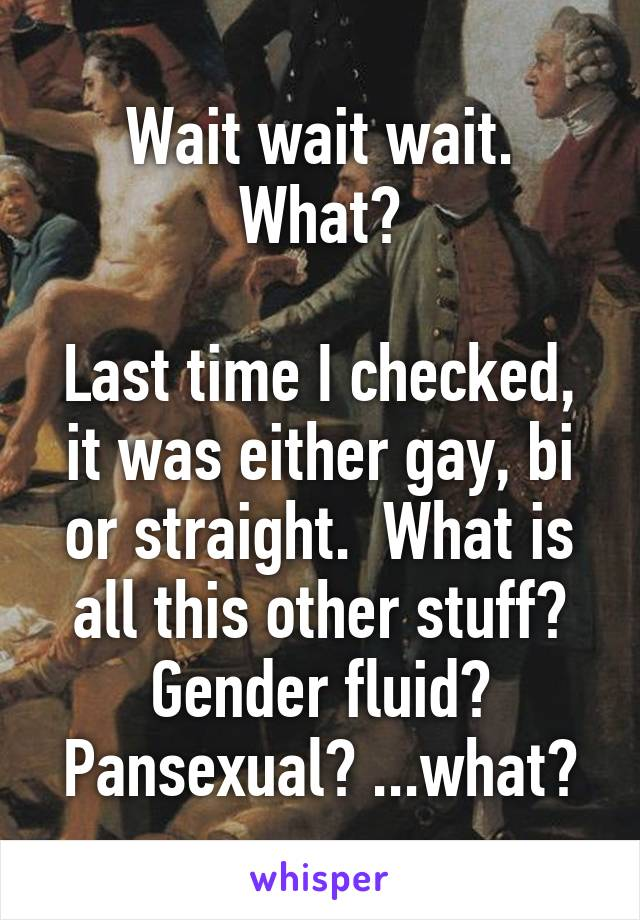 Wait wait wait. What?  Last time I checked, it was either gay, bi or straight.  What is all this other stuff? Gender fluid? Pansexual? ...what?