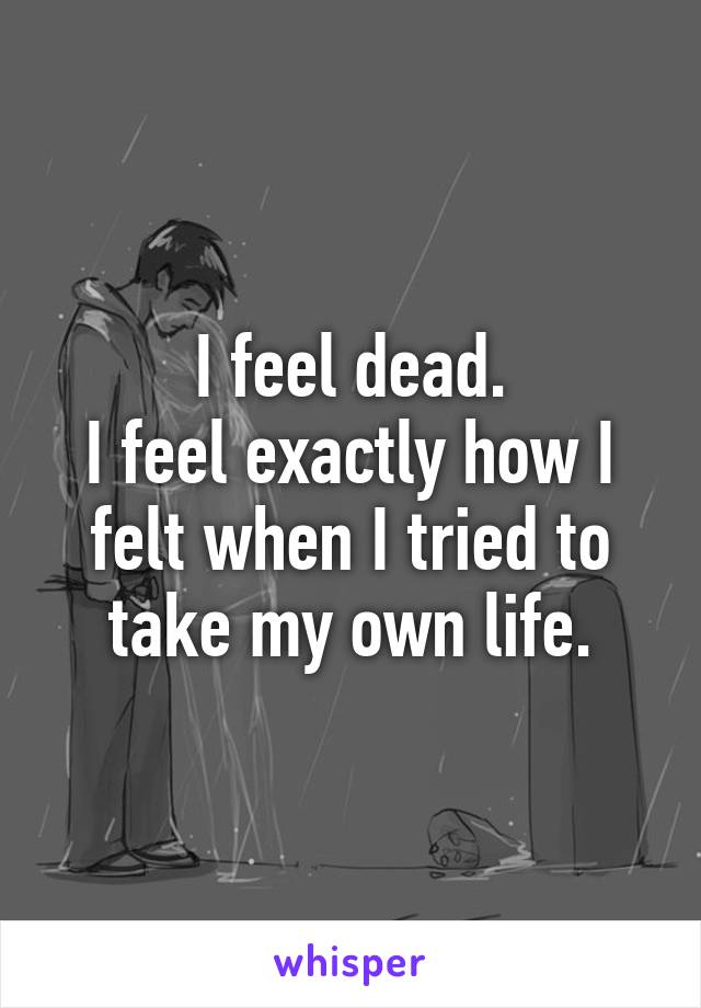 I feel dead. I feel exactly how I felt when I tried to take my own life.