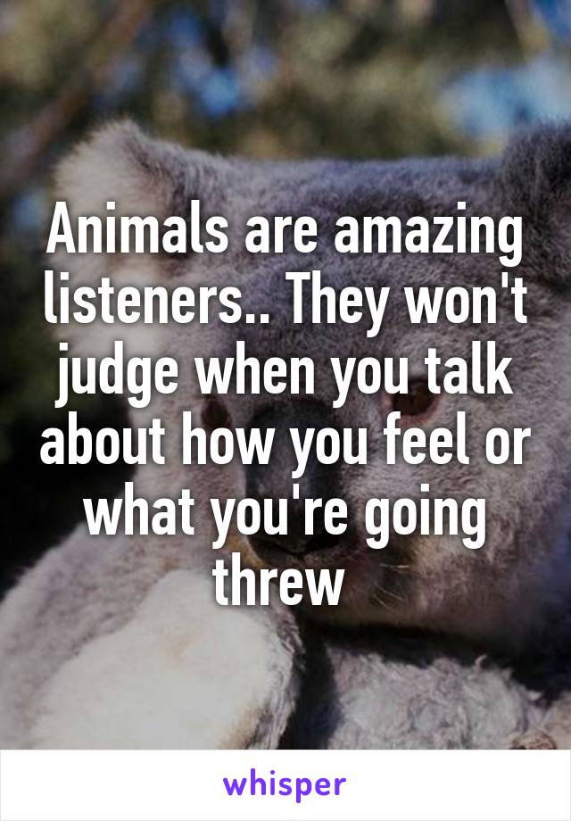Animals are amazing listeners.. They won't judge when you talk about how you feel or what you're going threw