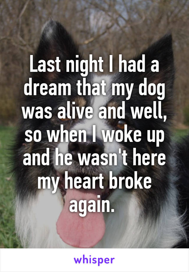 Last night I had a dream that my dog was alive and well, so when I woke up and he wasn't here my heart broke again.