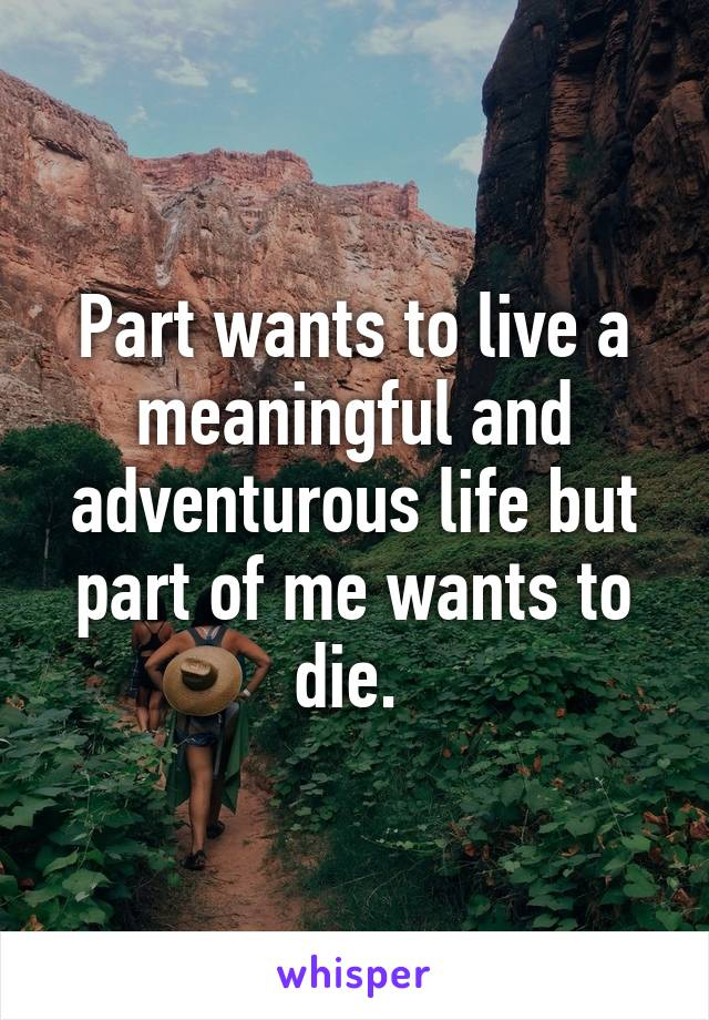 Part wants to live a meaningful and adventurous life but part of me wants to die.