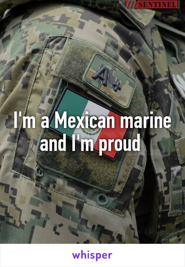 I'm a Mexican marine and I'm proud