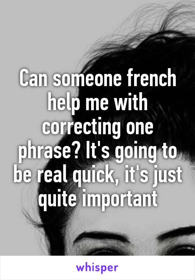 Can someone french help me with correcting one phrase? It's going to be real quick, it's just quite important