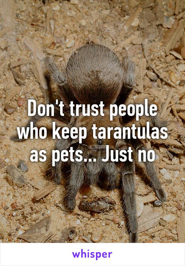 Don't trust people who keep tarantulas as pets... Just no