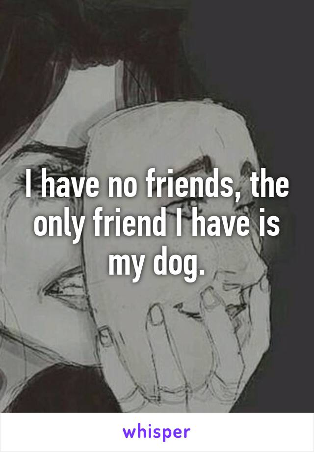 I have no friends, the only friend I have is my dog.