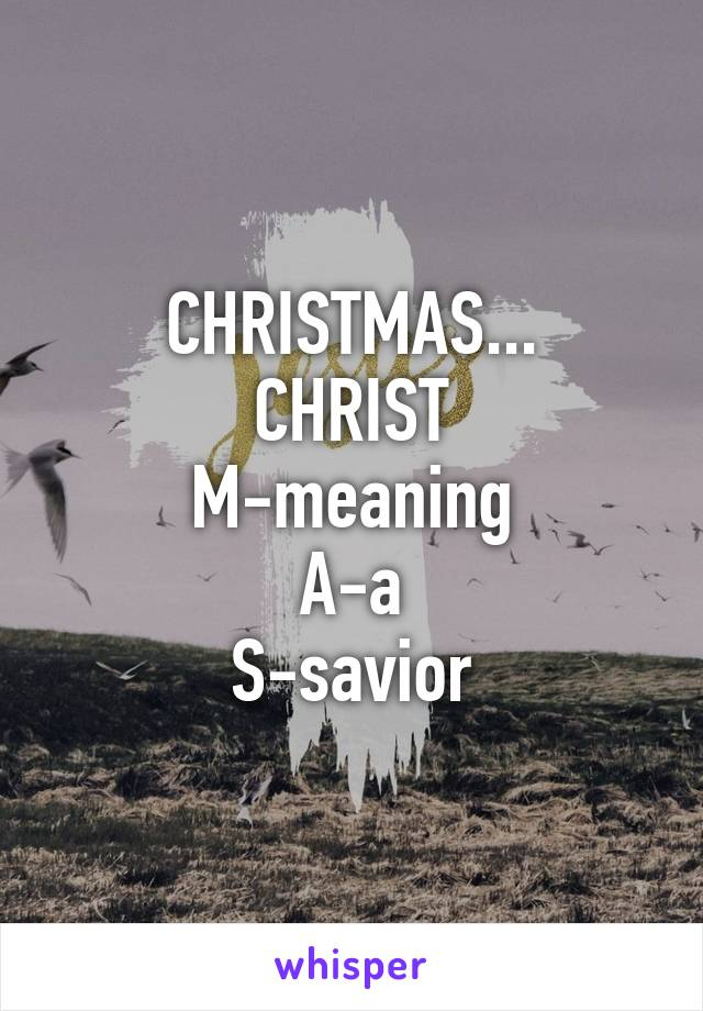 CHRISTMAS... CHRIST M-meaning A-a S-savior