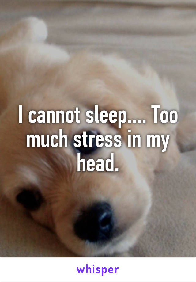I cannot sleep.... Too much stress in my head.