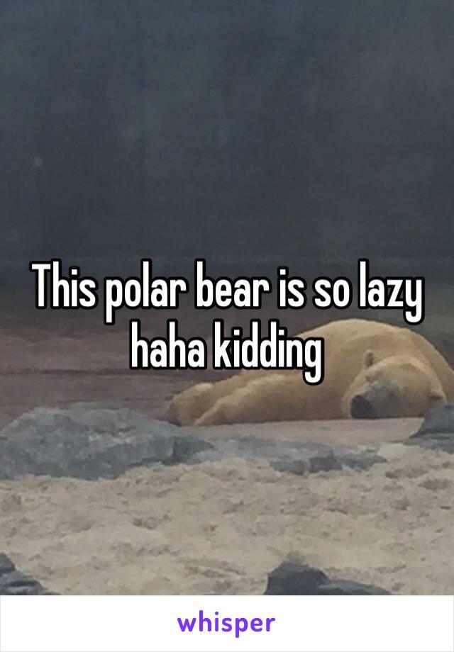 This polar bear is so lazy haha kidding