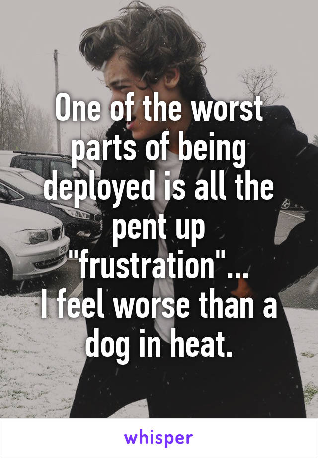 "One of the worst parts of being deployed is all the pent up ""frustration""... I feel worse than a dog in heat."