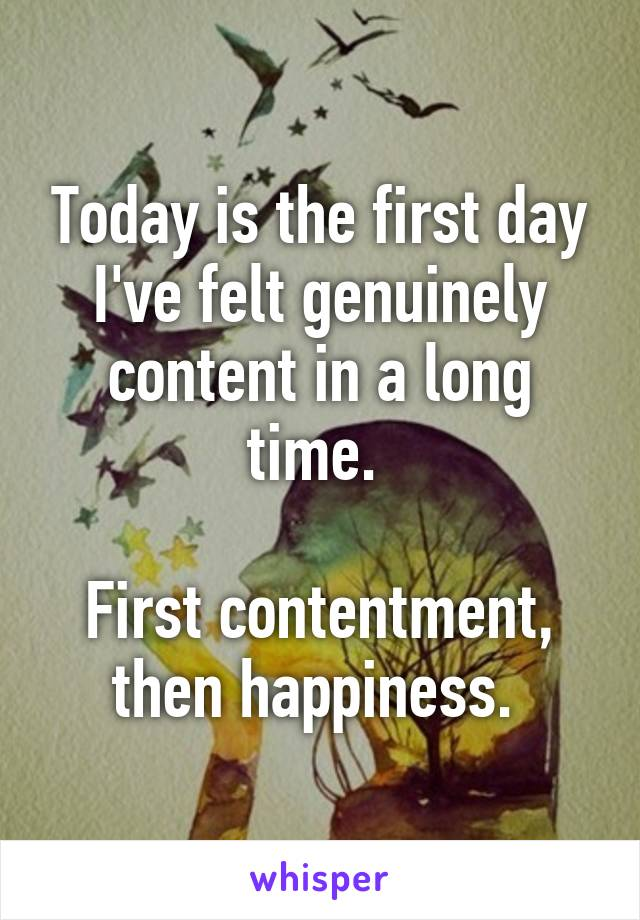 Today is the first day I've felt genuinely content in a long time.   First contentment, then happiness.