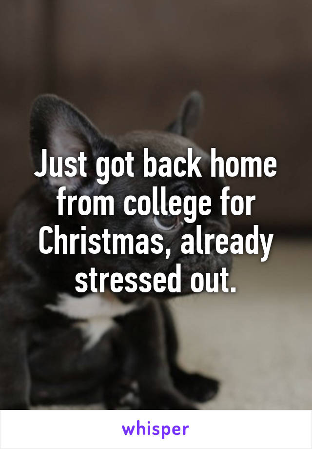 Just got back home from college for Christmas, already stressed out.