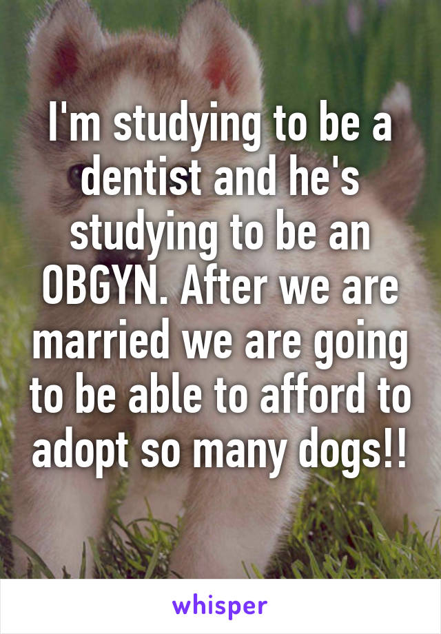 I'm studying to be a dentist and he's studying to be an OBGYN. After we are married we are going to be able to afford to adopt so many dogs!!