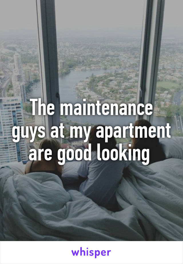 The maintenance guys at my apartment are good looking